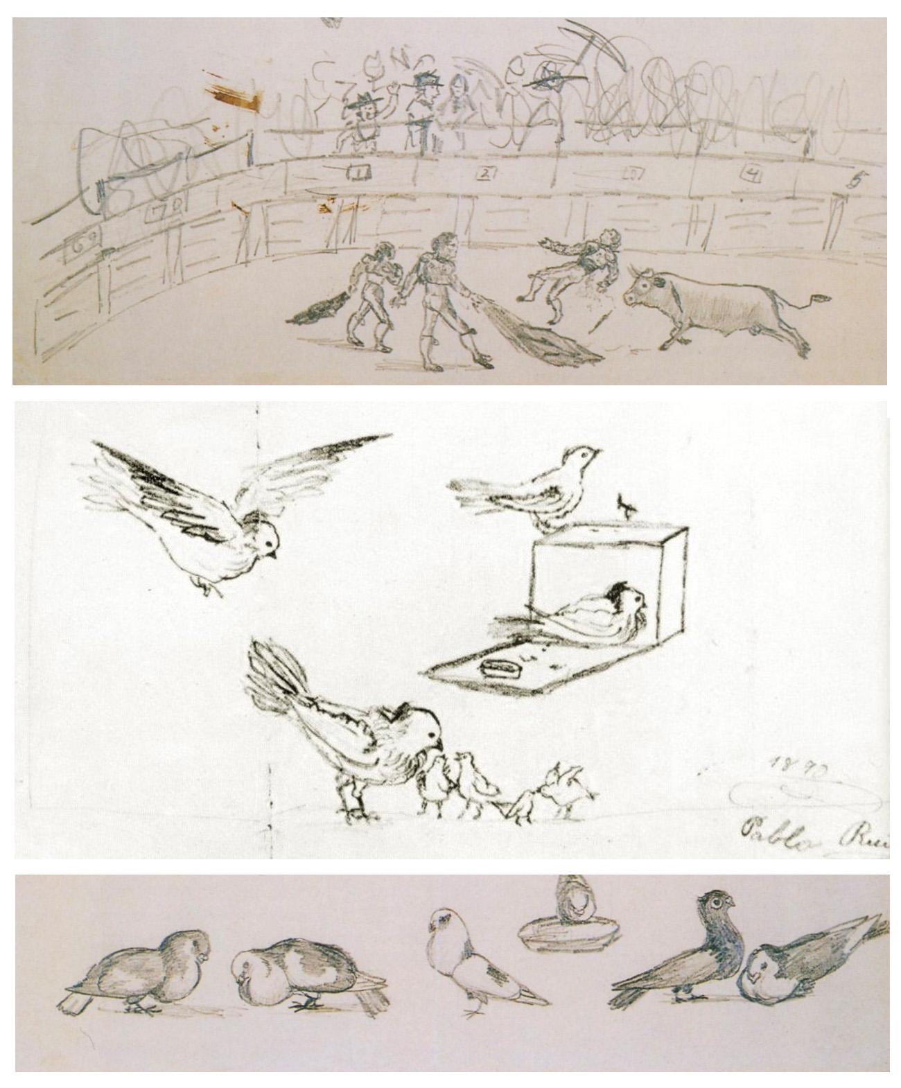 Picasso Childhood Sketches