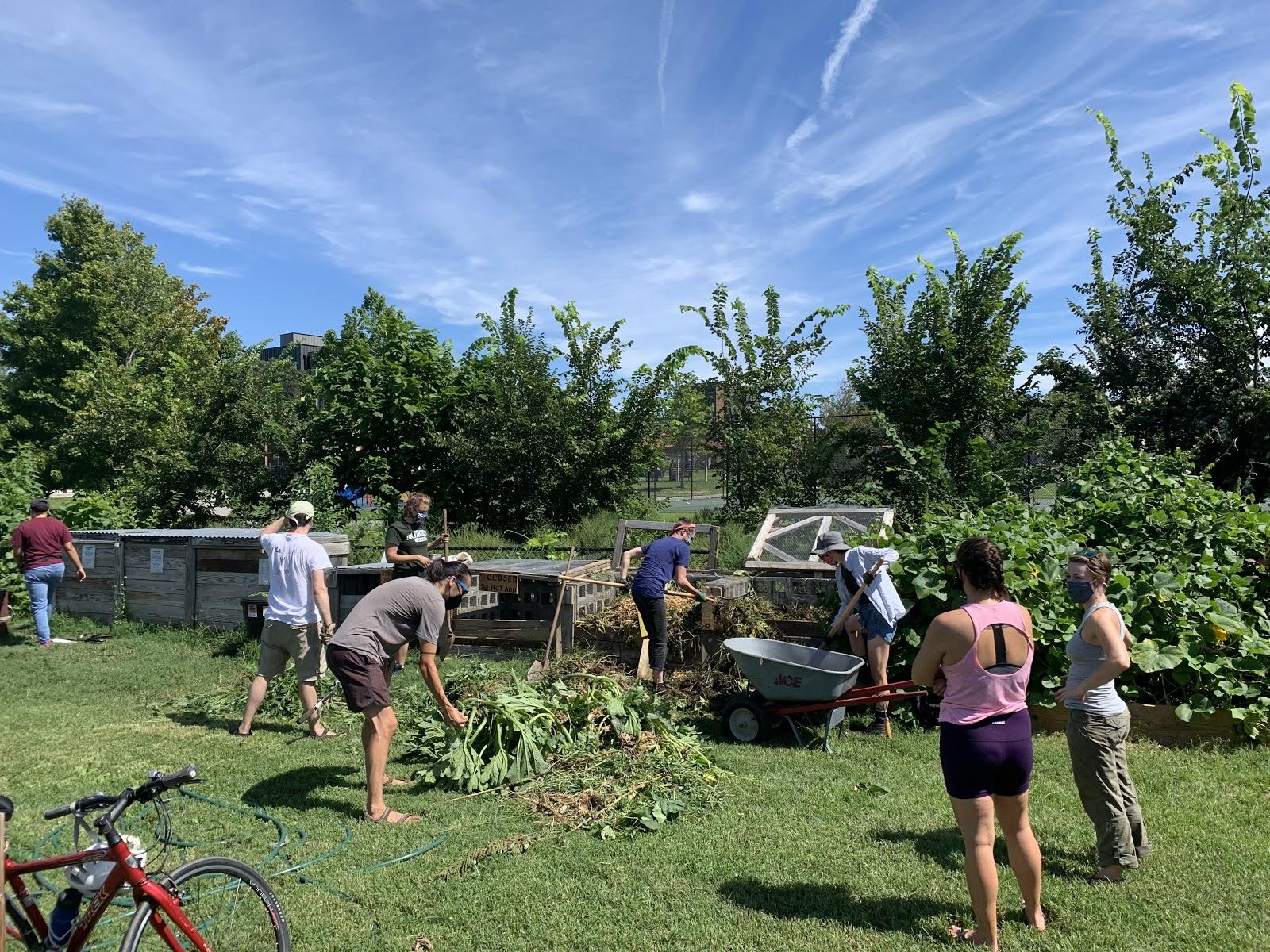 Hazel Unger Garden workday