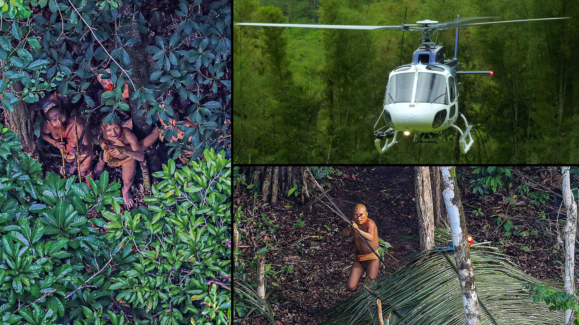 Amazon tribe collage Miklos